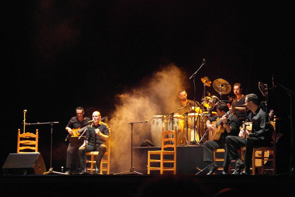 espectáculo flamenco pura sangre