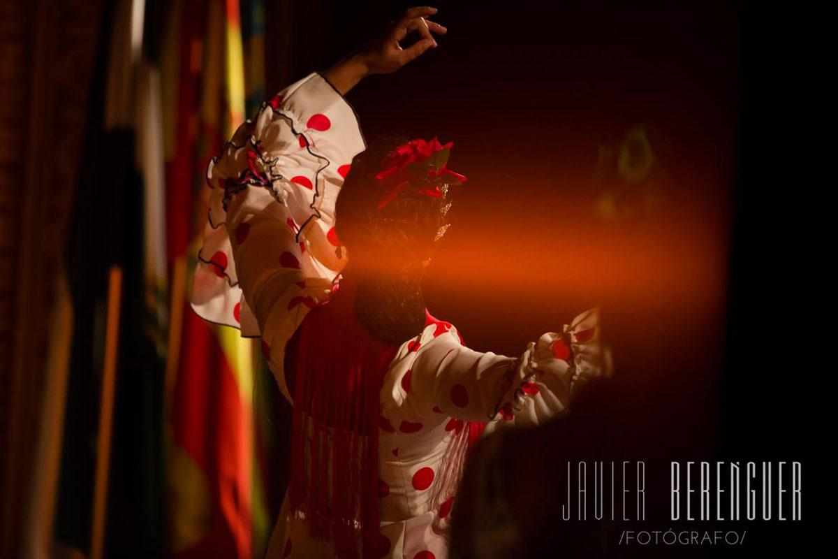 Gran teatro elche cuadro flamenco